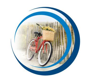 RexWEB_Contact_bike